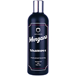 MEN'S SHAMPOO 250ML